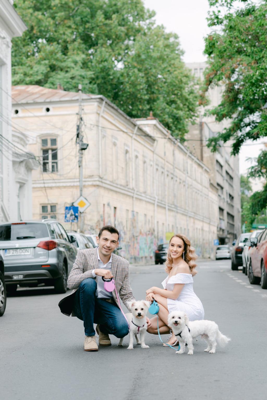 sedinta foto cuplu caini arthur verona Bucuresti